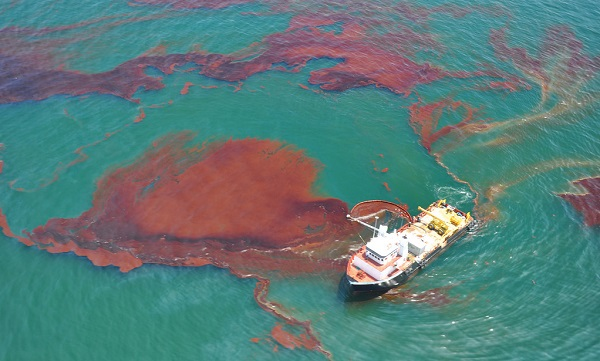 London Lecture: How algae help bacteria clean up oil spills